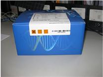 大鼠二胺氧化酶(DAO)ELISA試劑盒
