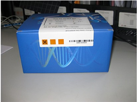 大鼠凝聚素(CLU)ELISA试剂盒