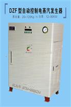 電加熱蒸汽發生器(電鍋爐)