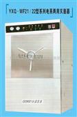 供应矩形压力蒸汽灭菌器(电蒸两用型)