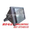 GT002GT002防水防尘防震投光灯,JW7210  BTC8210  NFC9180 FW6100GF
