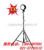 DGY100ADGY100A系列便携式升降防爆灯,上海生产